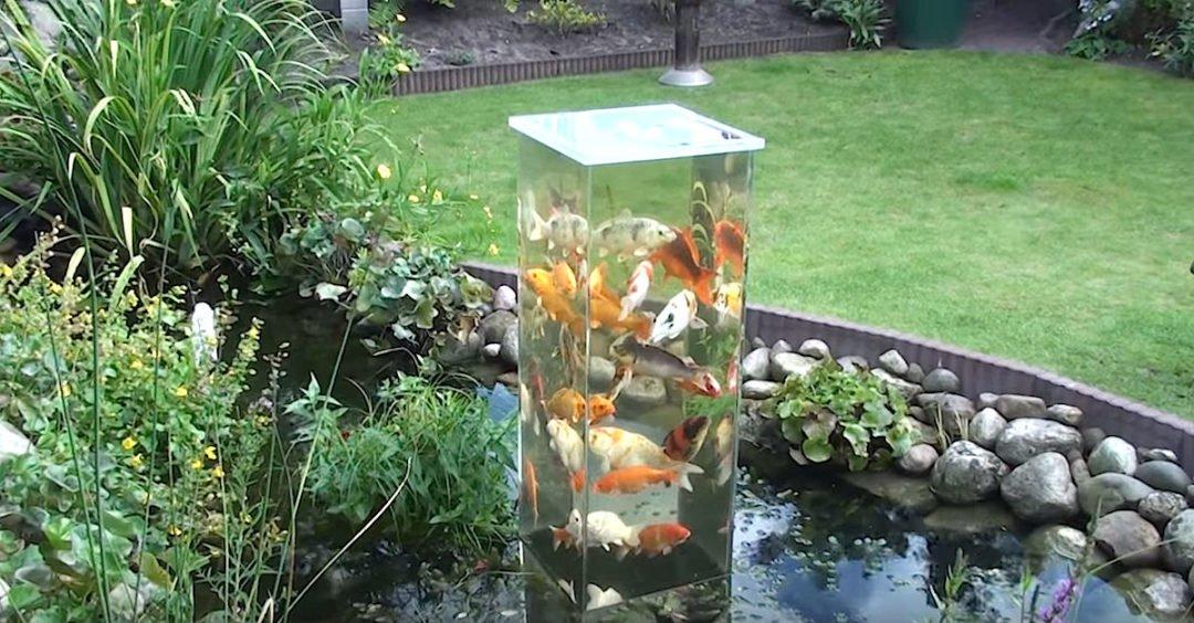 Fischturm im Gartenteich - Home Insider Wohnblog